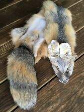 Kit Fox Pelt Fur Hide Tanned Log Cabin Decor coyote red grey rustic furniture