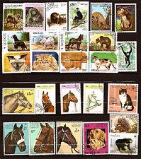 LAOS  Les animaux sauvages et domestiques : chevaux,chiens,chats, singes F4