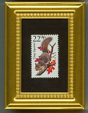 GRAY SQUIRREL  -   A GLASS FRAMED COLLECTIBLE POSTAGE MASTERPIECE!