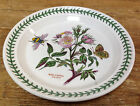 Portmeirion Luncheon Plate Rose Canina Dog Rose Salad Botanic Garden Bumble Bee