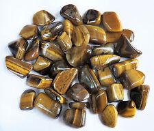 8 oz Medium Gold TIGER EYE Tumbled Stones Healing Reiki Metaphysical 1/2 lb