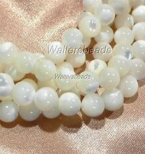 Mother Of Pearl Natural Round White Shell Bead Strand For Bead Craft 8 MM 16