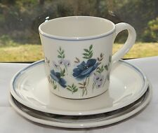 Royal Albert Country Garden Meadow Song Pattern Trio Cup Saucer Plate