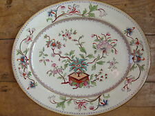 Antique Royal Worcester Large Meat Plate Indian Tree Tea Chinoserie Early 48cm