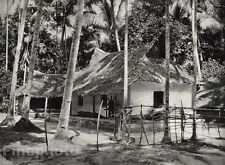 1928 Original INDIA Malabar Coast House Village Coconut Palm Photo By HURLIMANN