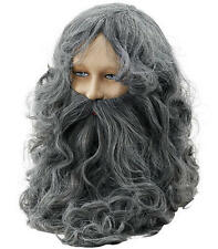 Long Grey Wizard Wig & Beard Fancy Dress Lord Of The Rings Troll
