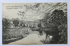 Old postcard UP THE LITTLE BEAVER KILL, LIVINGSTON MANOR, N.Y., 1907