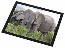 African Elephants Black Rim Glass Placemat Animal Table Gift, AE-11GP