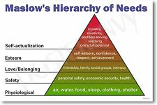 Maslows Hierarchy of Needs - NEW Classroom Science Poster