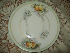 Antique UNO Bavaria Plate Hand Paint Flowers and Fruit Signed by Artist on back