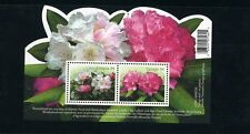 S/S   2318   RHODODENDRONS