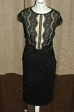 Brand New Phase Eight / 8 Ivana Lace dress Size 12