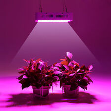1000W LED Full Spectrum Grow Light Chip for Medical Plants Veg Bloom Indoor 06C