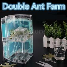 Double Ant Farm Gel Maze 3D Educational Nursery Live Feeding System Habitat Gift