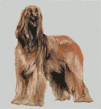 "Afghan Hound Counted Cross Stitch Kit 9.25""x 7.5"" 23.5cm x 19cm D2116"