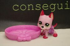 Littlest Pet Shop Great Dane Puppy Dog Pink With Skirt & Bed #2583 Strawberry