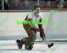 Roger Crozier DETROIT Red Wings 8 X 10 color glossy PHOTO NHL hockey #dtr3rc1gs