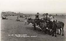 The Donkeys Mablethorpe RP old pc used 1960 Arjay