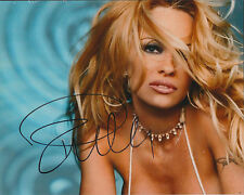 Pamela ANDERSON SIGNED Autograph SEXY Photo AFTAL COA Playboy Model