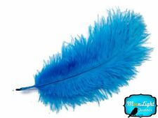 "Ostrich Feathers, 6-8"" Turquoise Blue Ostrich Feathers 10 Pieces"