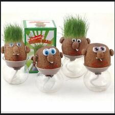 Magic Grass Plant Pot Grass DIY Magic Grass Plant Pot Grass Head Doll o8