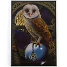 Quality Lisa Parker Fridge Magnet~Fantasy Art~Crystal Ball Owl~LP8~uk seller