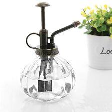 Mygift CHIARO A COSTINE in stile vintage decorativa in vetro Impianto MISTER bottiglia con T..