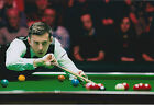 Mark SELBY SIGNED 12x8 Photo Autograph COA AFTAL Masters Winner SNOOKER
