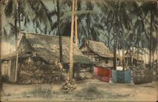Malay Village Singapore Thatch Roof Homes c1910 Postcard