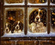 Springer Spaniel and puppies, Christmas cards pack of 10 by John Trickett. C182X