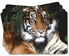 Bengal Tiger in Sunshade Picture Placemats in Gift Box, AT-10P