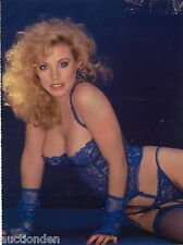 Shannon Tweed 725 Pictures Collection DVD (Photo/Images Disc)