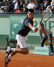 Novak Djokovic UNSIGNED photo - E113 - One of the greatest tennis players ever