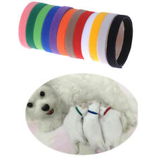 Adjustable Puppy Kitten Newborn ID Collars Pet Litter Bands 12 COLORS