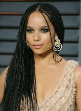 Long black,  micro braided  lace wig. Box braids.  Human hair blend