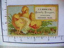 C E MONROE & CO FAMILY DRUGGISTS TAUNTON MASS 3 CHICKLINGS ONE HATCHING 1104
