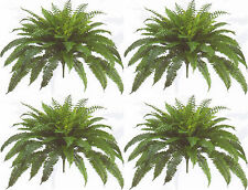 "4 BOSTON FERN 48"" SPREAD X 90 LEAF BUSH PLANT ARTIFICIAL TREE FLOWER SILK PALM 4"