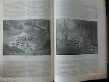 Old Antique Victorian Dogs Chase Hounds Louis Wain Illustrated Article 1886