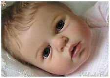 New Reborn Baby Doll Kit Noah Awake By Reva Schick @LDC Kits @ 20""
