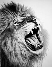 Framed Print - Pencil Sketch of a Roaring Lion (Picture Poster Animal Art)