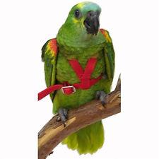 Parrot Pet Bird Avian Flight Harness No Assemble with DVD Instructions