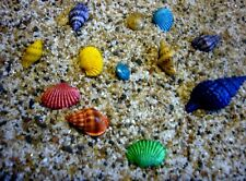 Miniature Fairy Garden 20 Tiny Colored Sea Shells + 4 oz. Sand  Dollhouse/Faerie
