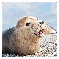 Kühlschrank - Magnet: kleiner Seehund - Heuler am Strand - seal baby