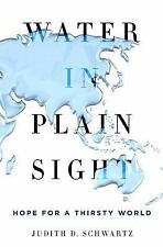 Water in Plain Sight : Hope for a Thirsty World by Judith D. Schwartz (2016,...