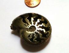A+ Russian Crystal PYRITE AMMONITE FOSSIL 47mm Sparkling Crystal Jewel