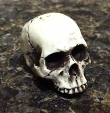 Made in USA Skull Skeleton head No Lower Jaw Punk Goth Motorcycle Hot Rat Rod 15