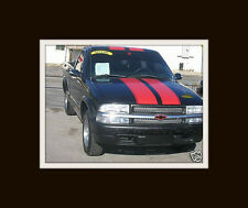 """All YR Chevy S10 10"""" Twin Rally Stripe Stripes Decal Decals Graphics S-10 S15"""
