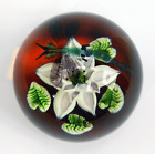 Caithness Ltd Ed. Paperweight - Dragonfly & Water Lilies - William Manson - 1991