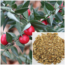 Butcher's broom root , soap making supplies, also for herbal extracts, teas.
