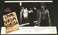 Franco Citti Pier Paolo Pasolini UNA VITA VIOLENTA fotobusta originale 1962 #5